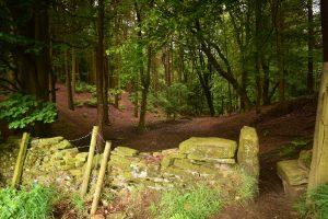Griffe Wood thanks to Malcolm Eldon